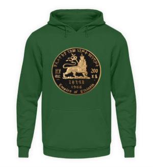 Lion of Judah Hoodie - Unisex Hooded Pullover Hoodie-833
