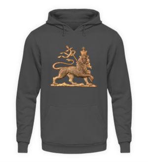 Lion of Judah Hoodie - Unisex Kapuzenpullover Hoodie-1762