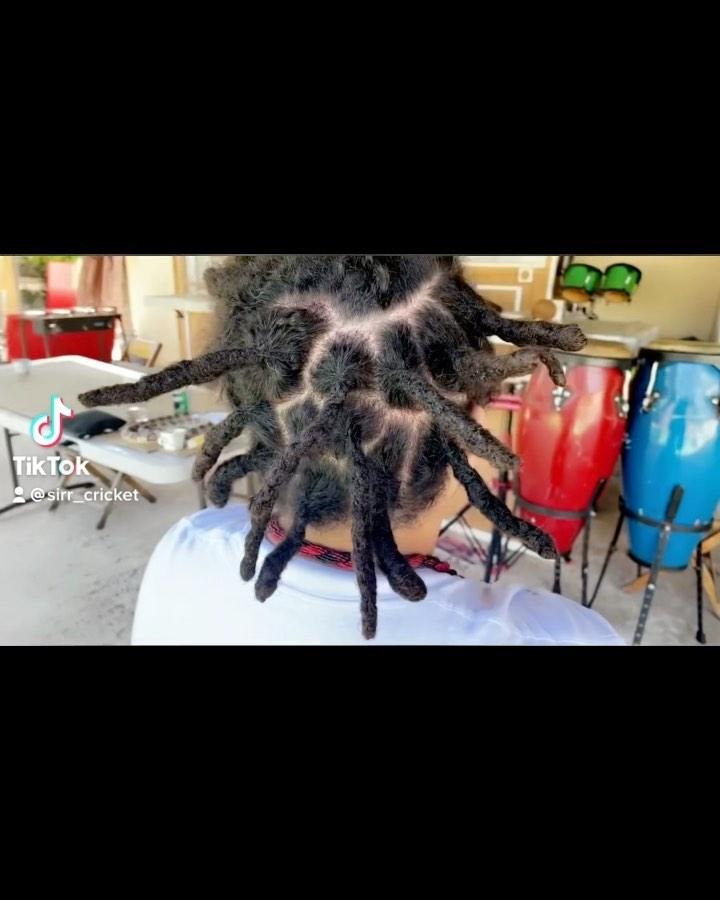 GO FOLLOW MY TIKTOK .  #rastafaritillidie #dreadporn #dreadhead #loctician #inst…